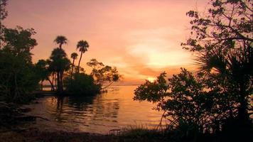 Vögel fliegen bei Sonnenuntergang auf dem Wasser