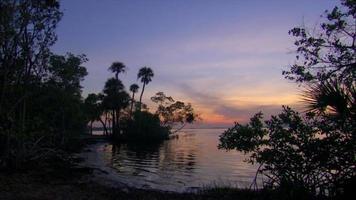 belle île coucher de soleil avec des oiseaux video