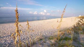spiaggia di pensacola all'ora d'oro
