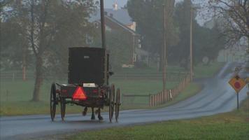 uma charrete puxada por cavalos amish video