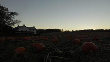 lapso de tiempo del amanecer de la granja