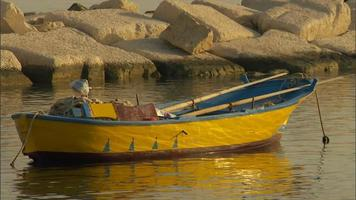 une barque colorée ancrée dans le port