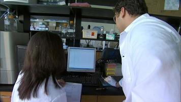 Wissenschaftler arbeiten in einem Labor zusammen