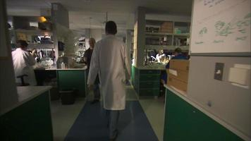 cientistas caminhando pelo corredor do laboratório video