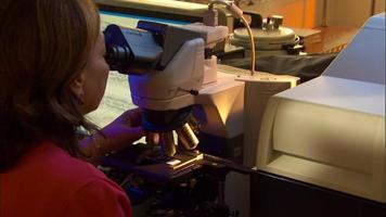 cientista mulher no microscópio no laboratório video