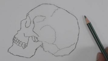 dibujo de calavera video