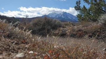 ciclistas de montaña en bicicleta por el sendero de Colorado | material de archivo gratis