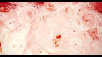 pintura roja moviéndose sobre la superficie de pintura blanca creando varias formas aleatorias