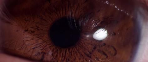 Cerca del ojo humano con iris marrón parpadeando tres veces