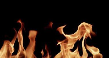 grandes chamas criando um fundo espetacular em câmera lenta 4k video