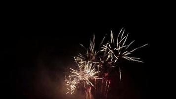 Fuegos artificiales de dalia dorada y peonía roja parpadeando en escena nocturna en 4k