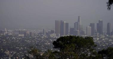 Plan long des gratte-ciel de los angeles panoramique à droite avec des branches d'arbres au premier plan en 4k