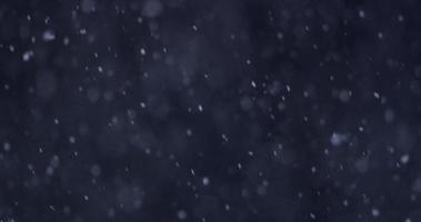 cena escura de inverno com neve desfocada e focada caindo lentamente na escuridão em 4k video
