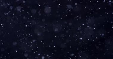 cena de inverno em noite fria com neve caindo em 4k video