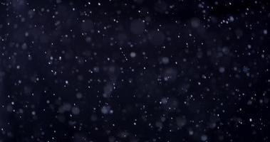 Modelo de nevasca de neve em floresta fria e escura em 4k video