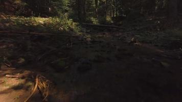 volando hacia atrás sobre un arroyo con una pequeña cascada en 4k video