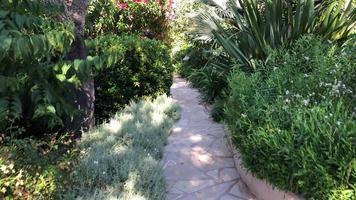 caminando por un jardín en 4k