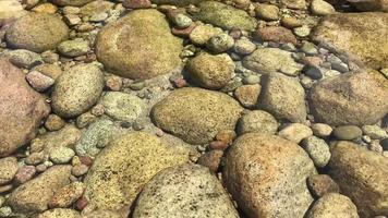 rocas en el arroyo en 4k