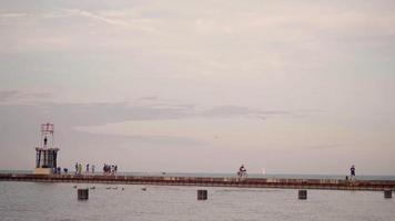 pessoas caminhando e tirando fotos em um cais de Chicago video