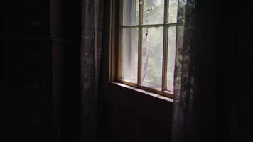Clip interior de cortinas y ventana brillante video