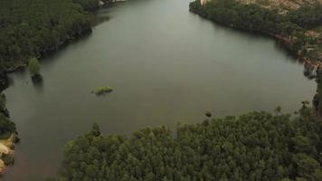 volando lejos de un lago en 4k