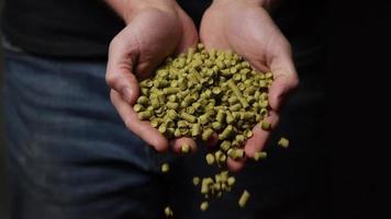 filmati al rallentatore di forniture e processi di produzione di birra in casa - produzione di birra 064