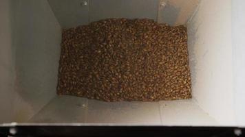 Imágenes en cámara lenta de suministros y procesos de elaboración casera de cerveza: elaboración de cerveza 030