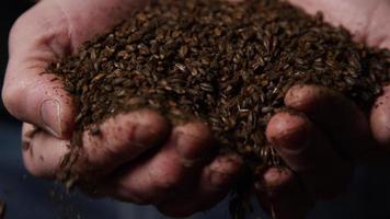 filmati al rallentatore di forniture e processi di produzione di birra in casa - produzione di birra 061