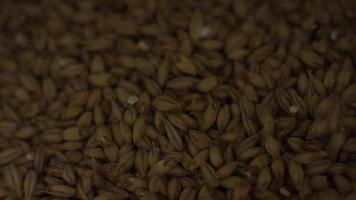 filmati al rallentatore di forniture e processi di produzione di birra in casa - produzione di birra 018