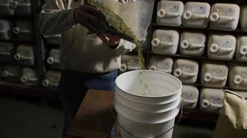Imágenes en cámara lenta de suministros y procesos de elaboración casera de cerveza: elaboración de cerveza 021