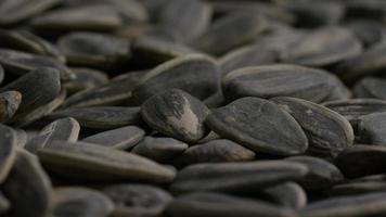 ripresa cinematografica e rotante di semi di girasole su una superficie bianca - semi di girasole 020 video