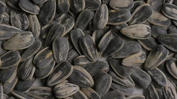Cinematic, rotating shot of sunflower seeds on a white surface - SUNFLOWER SEEDS 004