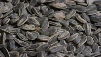 ripresa cinematografica e rotante di semi di girasole su una superficie bianca - semi di girasole 011