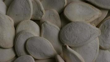 Toma cinematográfica giratoria de semillas de calabaza - semillas de calabaza 028