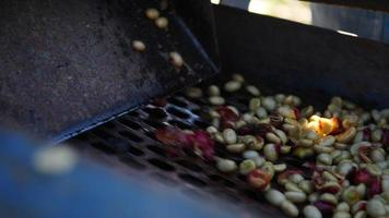 Wet process with coffee beans recently ripe from coffee trees ee trees video