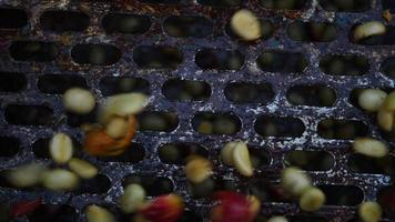 Wet process with coffee beans recently ripe from coffee trees video