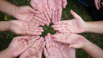 Dar un corazón rojo a muchas manos de personas. video