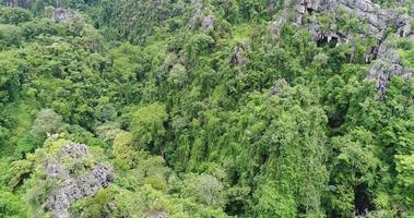 Vista aérea volando sobre un bosque lluvioso de las montañas rocosas en Tailandia