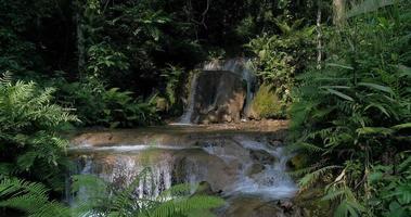 cachoeiras na floresta tropical da montanha e águas cristalinas