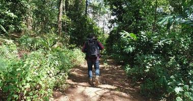 Young man hiking in tropical jungle with backpack. video