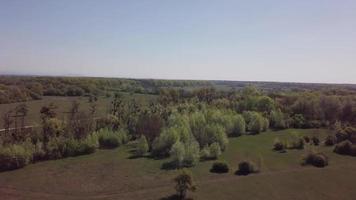 drone volando hacia los árboles en 4k video