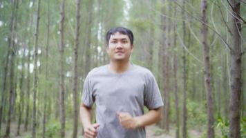 Healthy handsome young athletic sporty Asian runner man in sports clothing running and jogging on forest trail. video