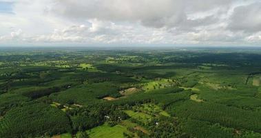 Aerial view green rainforest of Thailand video