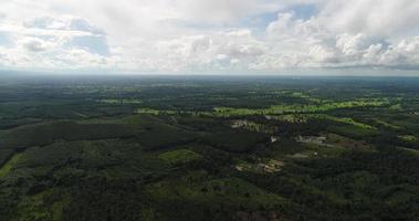 vista aérea da floresta tropical verde da tailândia