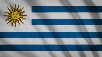 drapeau uruguay video