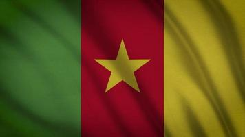 drapeau camerounais video