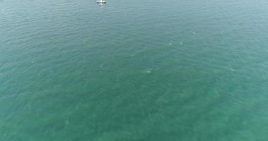 vue de dessus d'un bateau bleu naviguant dans la mer