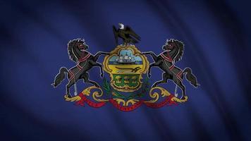 Pennsyvania, Staatsflagge