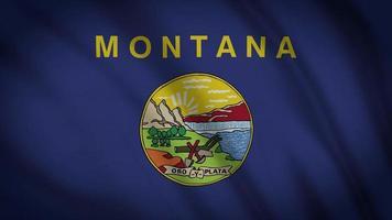 Staatsflagge von Montana