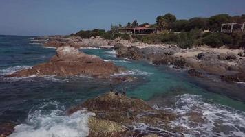 Cormorants on rock in the sea in 4K